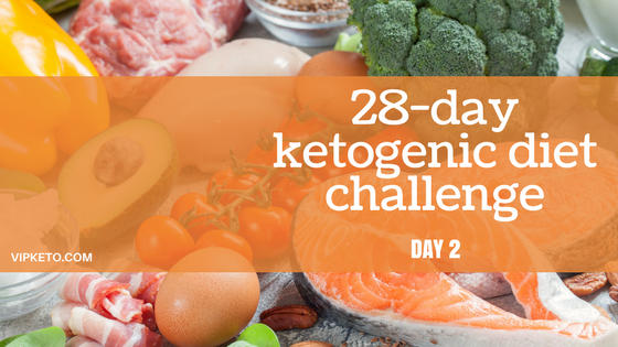 The Chicken Diaries February 2011: Day 2 : February Ketogenic Food Diary